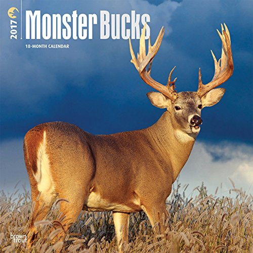 Monster Bucks - 2017 Calendar 12 x 12in