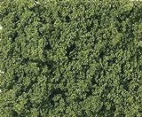 KATO(カトー) KATO(カトー)・WOODLAND SCENICS(ウッドランド・シーニックス) フォーリッジクラスター 緑色