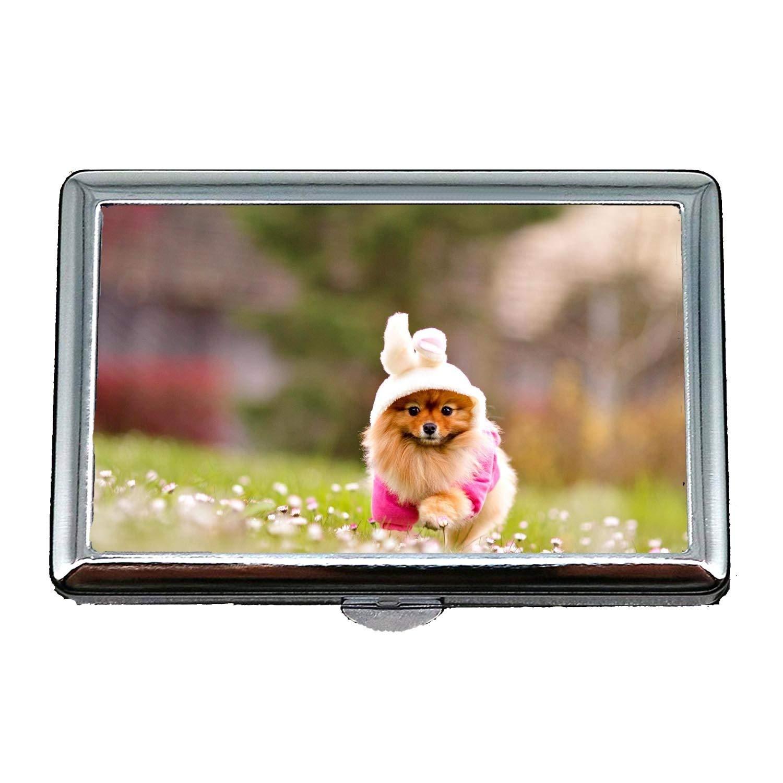 Portasigarette, cane pitbull Dog Animal Cat, porta carte di credito