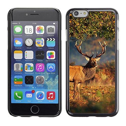 "Premio Sottile Slim Cassa Custodia Case Cover Shell // V00002960 grands cerfs sous l'arbre // Apple iPhone 6 6S 6G PLUS 5.5"""
