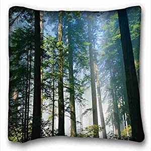 Soft Pillow Case Cover Nature Custom Cotton & Polyester Soft Rectangle Pillow Case Cover 16x16 inches (One Side) suitable for Full-bed