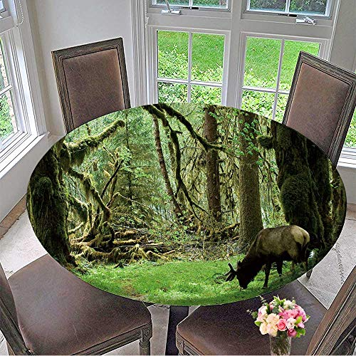 Mikihome Round Premium Table Cloth Roosevelt elk in Olympic National Park,Washington Perfect for Indoor, Outdoor 47.5