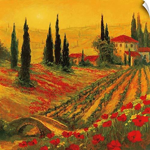 CANVAS ON DEMAND Art Fronckowiak Wall Peel Wall Art Print Entitled Poppies of Toscano I 10