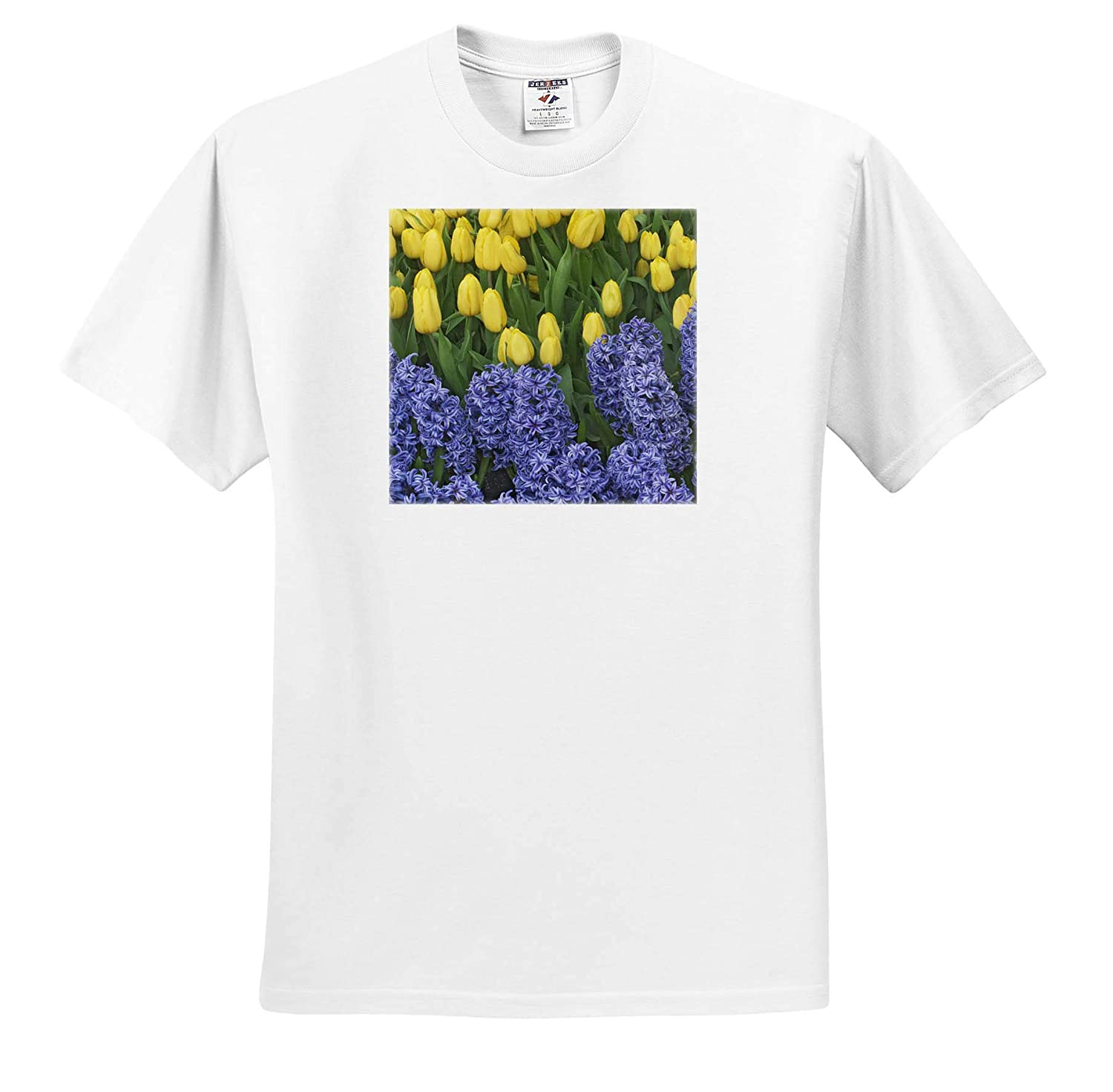 Hyacinth and Yellow Tulips in Garden 3dRose Danita Delimont - Adult T-Shirt XL Flowers ts/_314930