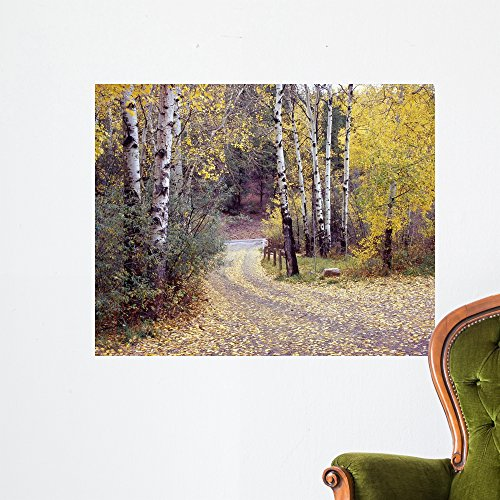 Drive Mural (Birch Tree Drive Fence Monte Nagler Wall Mural by Wallmonkeys Peel and Stick Graphic (36 in W x 29 in H) WM354304)