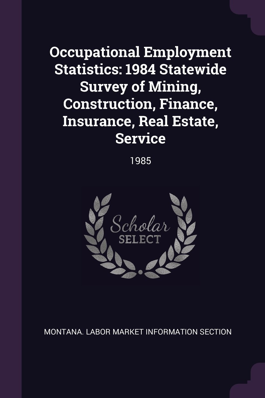 Occupational Employment Statistics: 1984 Statewide Survey of Mining, Construction, Finance, Insurance, Real Estate, Service: 1985 pdf epub