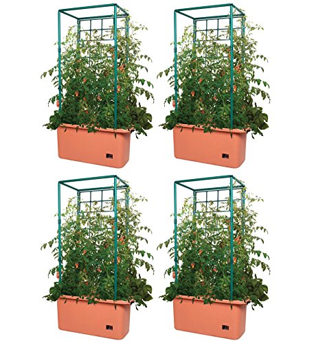 4 HYDROFARM GCTR 10 Gallon Self Watering Tomato Trellis Garden Systems on Wheels by Hydrofarm