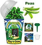 Children's Organic Plant Kit - Professor Pea Window Garden - Complete Indoor Grow Set - Seeds, Soil, Planter, Greenhouse Dome, Water Tray & Cup, Growing Guide, Diary. Unique Educational DIY Kids Gift.