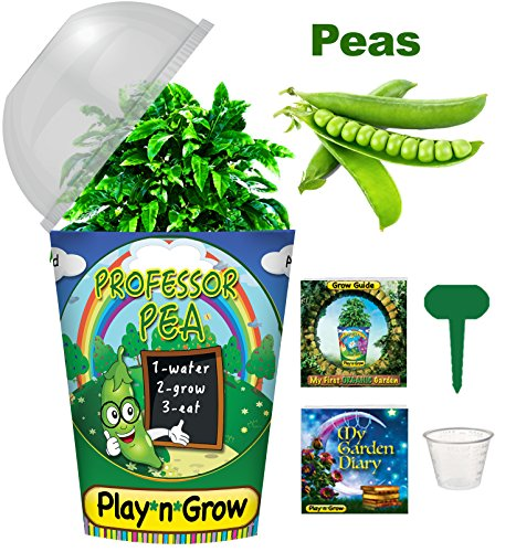 Children's Organic Plant Kit - Professor Pea Window Garden - Complete Indoor Grow Set - Seeds, Soil, Planter, Greenhouse Dome, Water Tray & Cup, Growing Guide, Diary. Unique Educational DIY Kids Gift. (Childrens Seed Kit)