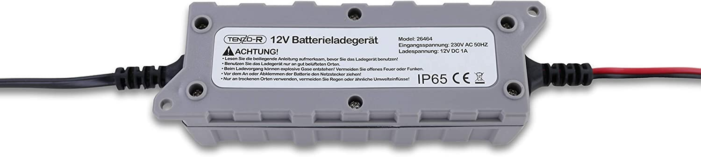 Carparts Online 26464 Batterie Ladegerät Wartungs Gerät Für 12v 6 100 Ah Mit Led Auto