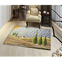Italian Non Slip Rugs Van Gogh Style Italian Valley Rural Fields with European Scenery Painting Print Indoor/Outdoor Area Rug 32x48 Multicolor