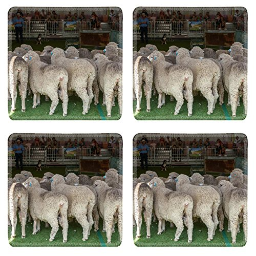 liili-square-coasters-2015-sydney-royal-easter-show-natural-rubber-material-image-16958187696