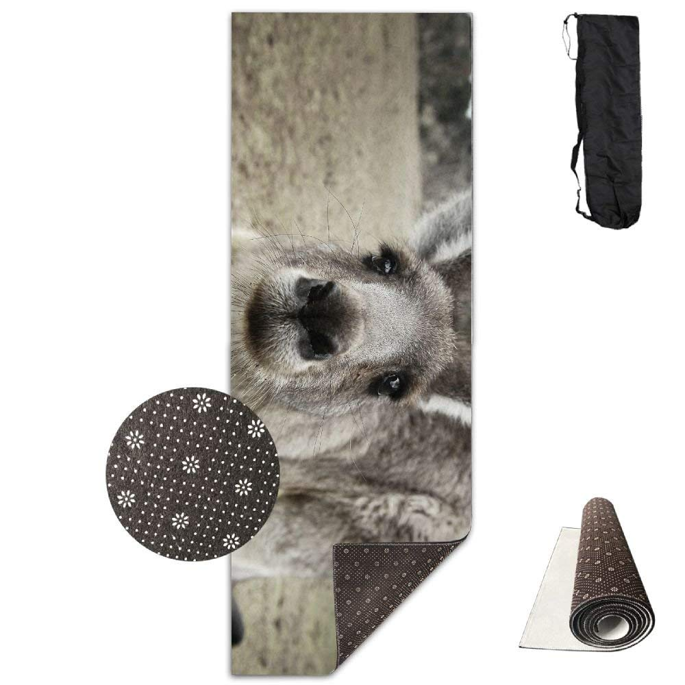 FGRYGF Animal Kangaroo Close-up Yoga Mat - Yoga Matte - Non-Slip Lining - Easy to Clean - Latex-Free - Lightweight and Durable - Long 180 Width 61cm