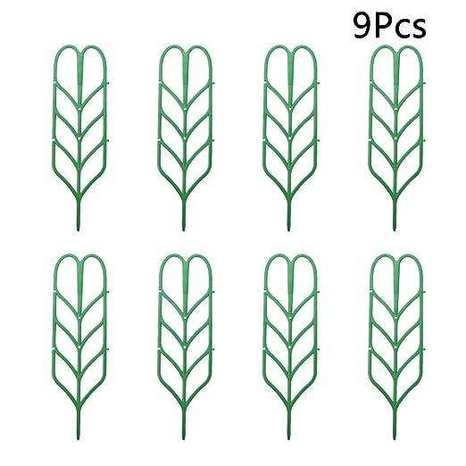 Yardwe 9 pcs jaulas y Soportes para Plantas Maceta de jardín Mini ...