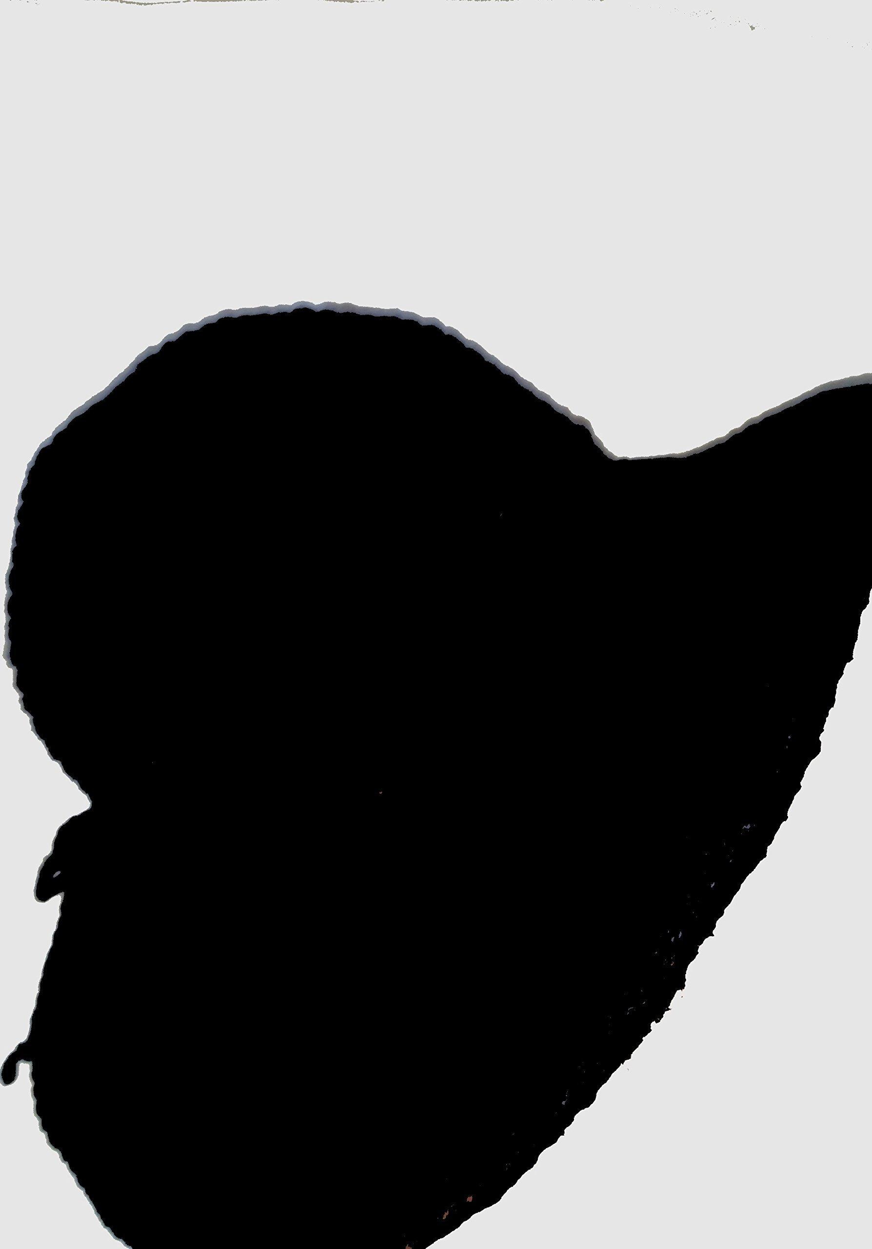 Black Crochet brim hat