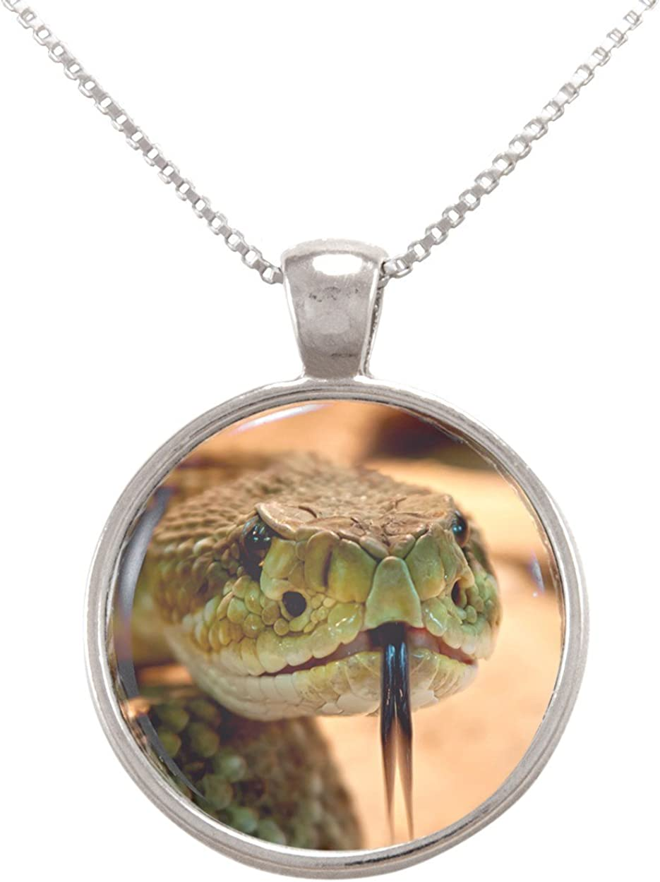 Arthwick Store Close Up Image of a Snake Face Pendant Necklace
