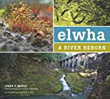 img - for Elwha: A River Reborn by Lynda Mapes (2013-03-04) book / textbook / text book