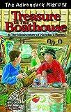 The Adirondack Kids #18: Treasure in the Boathouse - Book #18 of the Adirondack Kids