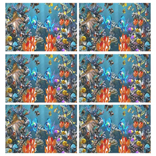 Cocoa trade Heat Resistant Placemats for Kitchen Table Mats Dining Room,Tropical Fish 3D Screensaver Washable Insulation Non Slip Placemat 12x18 inch(6 pcs)