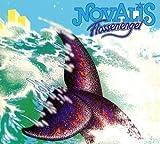 Flossenengel by Novalis