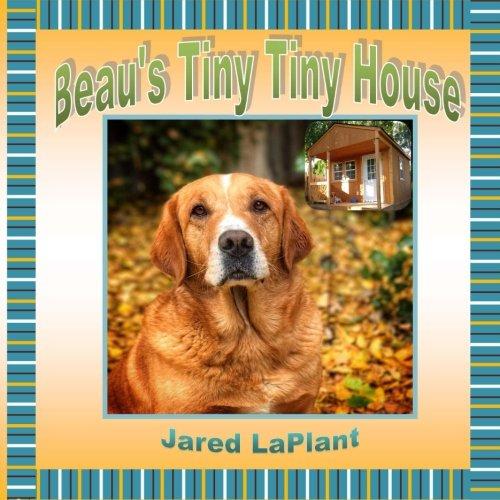 Download Beau's Tiny Tiny House pdf