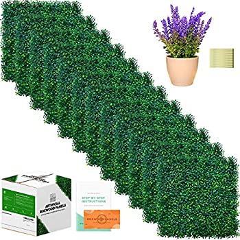Image of CREATIVE SPACE Artificial Boxwood Panels - 12 Pieces, 20' x 20' - Boxwood Hedge Set, Grass Wall, Greenery Backdrop - Artificial Plant Included Home and Kitchen