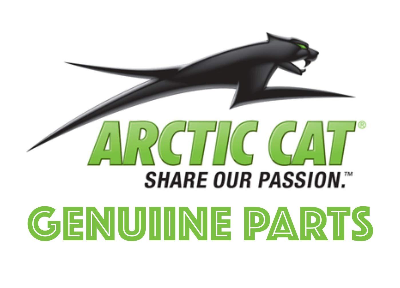 L//XL Arctic Cat Fractal Cap