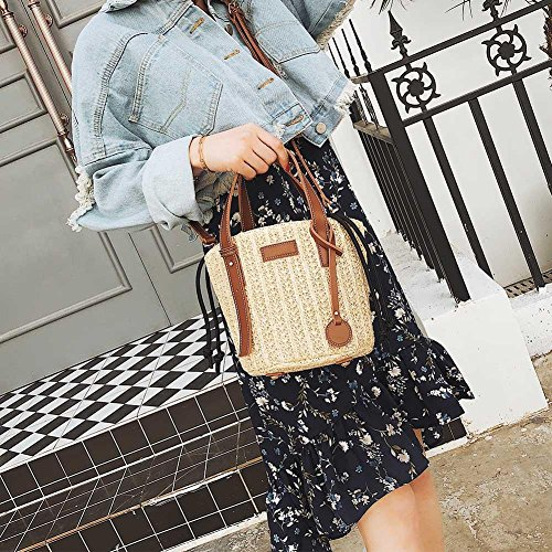 Shoulder Bag Handbag Women Messenger Widewing Bucket Vintage Casual Beach Mini Straw qSnTntfw