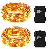 ER CHEN(TM)Indoor and Outdoor Waterproof Battery Operated 100 LED String Lights on 33 Ft Long Ultra Thin Copper String Wire with Timer(Warm White,2 Pack)