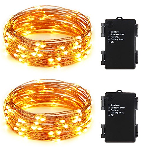 ER CHEN(TM)Indoor and Outdoor Waterproof Battery Operated 100 LED String Lights on 33 Ft Long Ultra Thin Copper String Wire with Timer(Warm White,2 Pack) by ErChen
