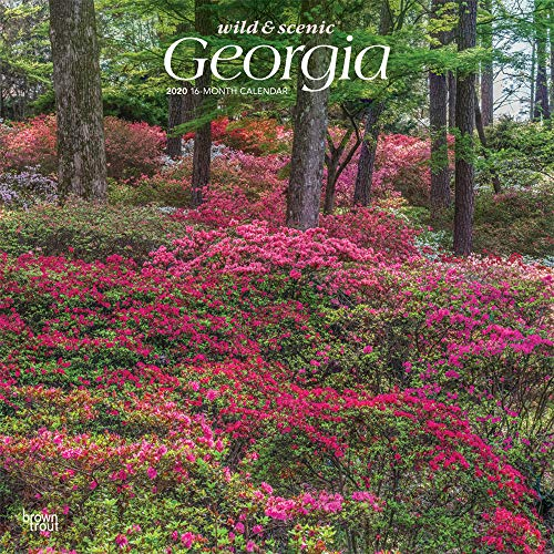Georgia Wild & Scenic 2020 12 x 12 Inch Monthly Square Wall Calendar, USA United States of America Southeast State ()