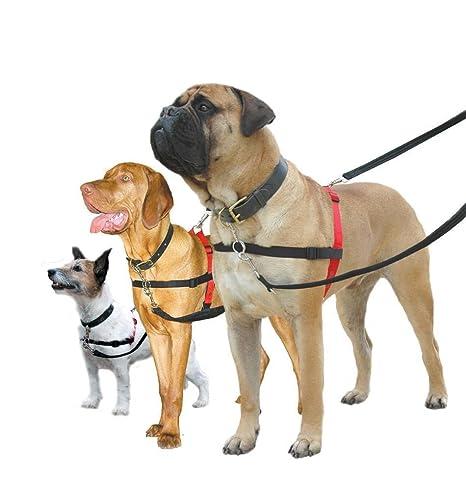 No Tire Arnés del perro cachorro Formación Control cabeza cuello ...