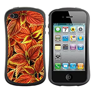 "Hypernova Slim Fit Dual Barniz Protector Caso Case Funda Para Apple iPhone 4 / iPhone 4S [Floral del otoño Castaño Verde Rojo""]"
