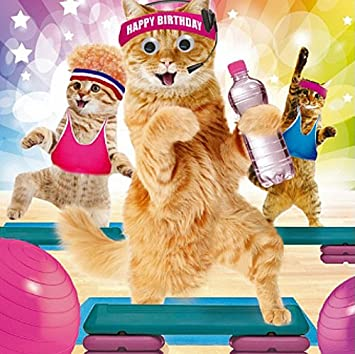 Birthday card happy birthday funny animals gym cats goggly 3d birthday card happy birthday funny animals gym cats goggly 3d moving eyes bookmarktalkfo