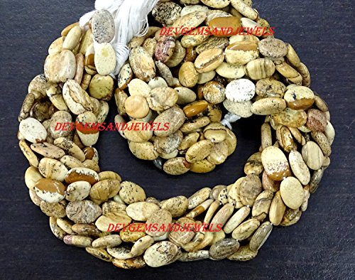 (5 Strand Lot Picture Jasper Gemstone Smooth Flat Oval Shape 7.50 X 11 mm Approx Full 13 Inch Strand - in Wholesaler Price)