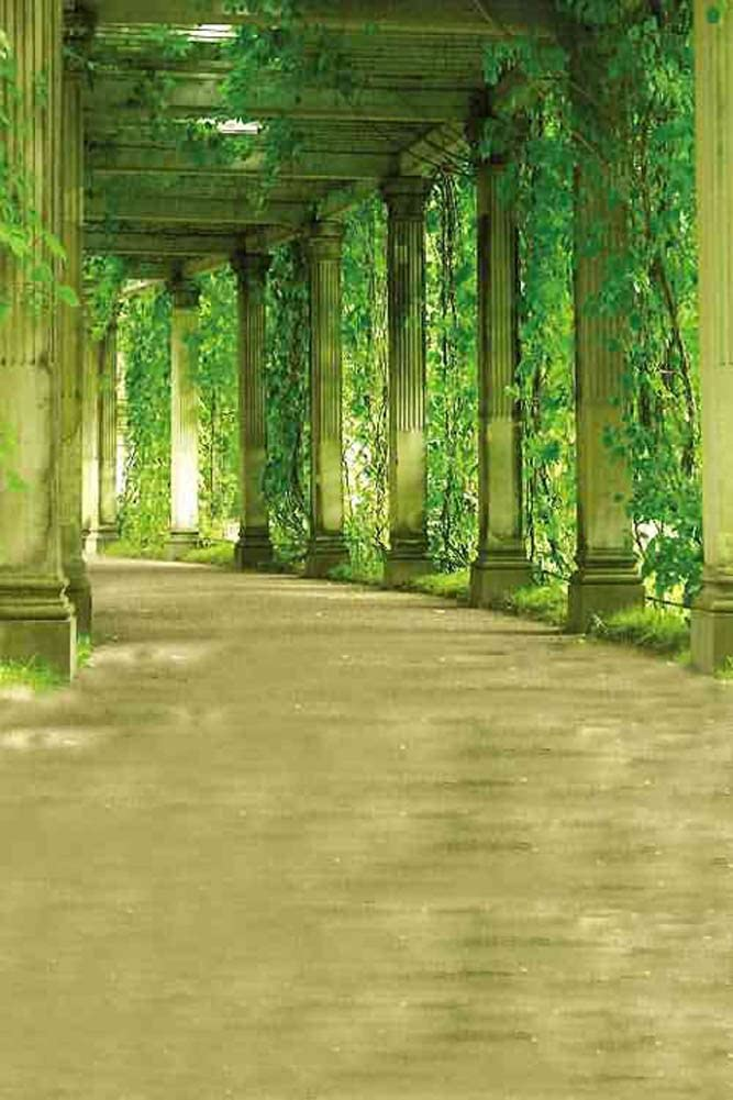 GladsBuy Green Tunnel 8 x 12 Computer Printed Photography Backdrop Arches or Pillars Theme Background ZJZ-641