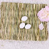 Grass Mat Woven Bed Mat for Small Animal 3PCS Large