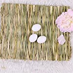 Grass Mat Woven Bed Mat for Small Animal Bunny Bedding Nest Chew Toy Bed Play Toy for Guinea Pig Parrot Rabbit Bunny Hamster Rat(Pack of 3) (3 Grass mats) 14