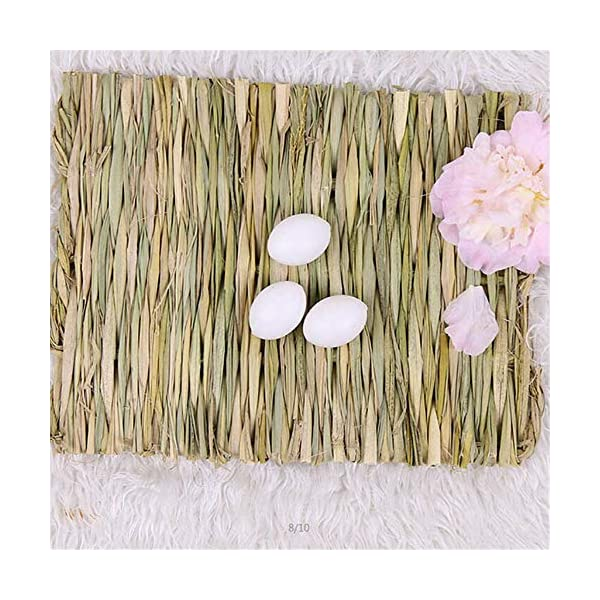 Grass Mat Woven Bed Mat for Small Animal Bunny Bedding Nest Chew Toy Bed Play Toy for Guinea Pig Parrot Rabbit Bunny Hamster Rat(Pack of 3) (3 Grass mats) 6