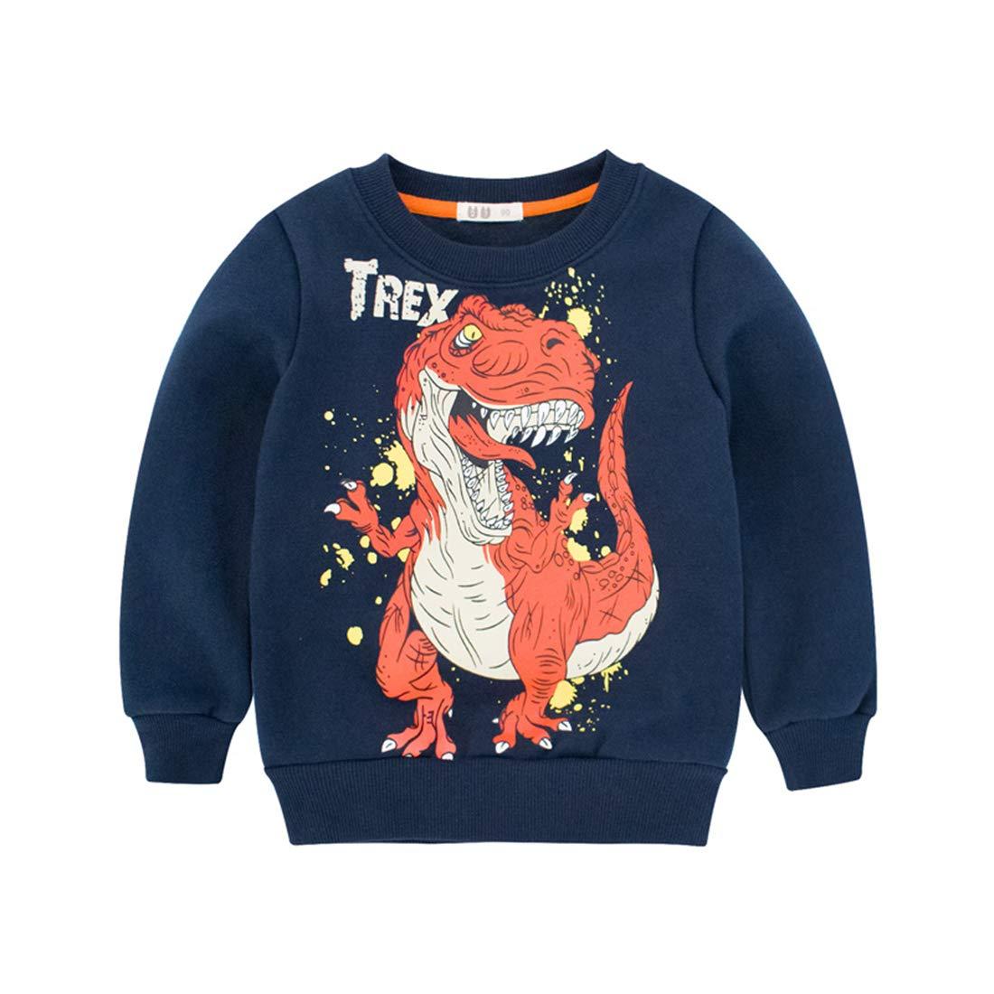 DDSOL Kid Boys Cute Dinosaur Sweatshirt Long Sleeve Crewneck Fleeces Pullover Toddler Cotton Tee Shirt Top 2T-8T