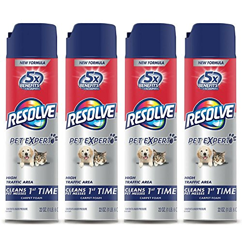 Resolve Pet Expert High Traffic, Carpet Foam, 22 oz (Pack of ()