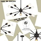 Sputnik Chandelier 10 Light Black Modern Pendant