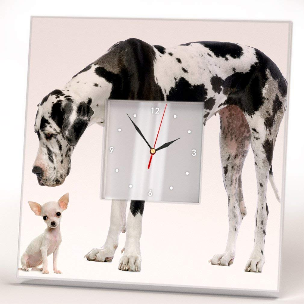 Great Dane and Chihuahua Dogs Wall Clock Framed Mirror Decor Pet Lovers Art Home Room Design Gift