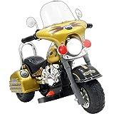 子供用電動乗用バイク バイキッズ2 TI-6611GD