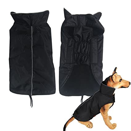 IN HAND Water Resistent Dog Jacket Cold Weather Soft Lined Dog Vest Climate Changer Dog Clothes