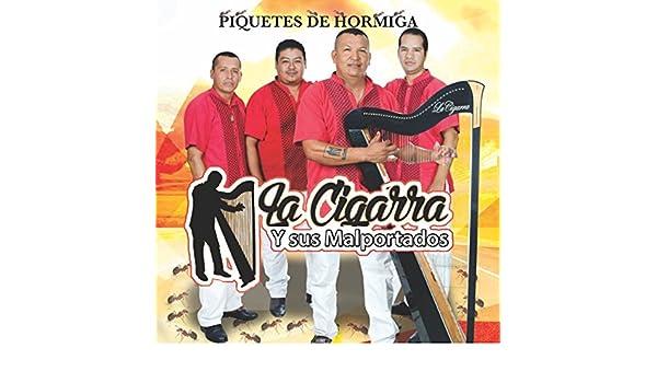 Piquetes De Hormiga by La Cigarra y Sus Malportados on Amazon Music - Amazon.com
