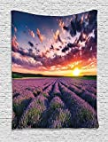 XHFITCLtd Lavender Tapestry, Blooming Fields in Endless Rows Agriculture Aromatherapy Rural Countryside Image, Wall Hanging for Bedroom Living Room Dorm, 60 W X 80 L Inches, Multicolor