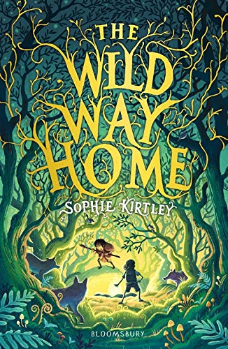 The Wild Way Home: Amazon.co.uk: Kirtley, Sophie: Books