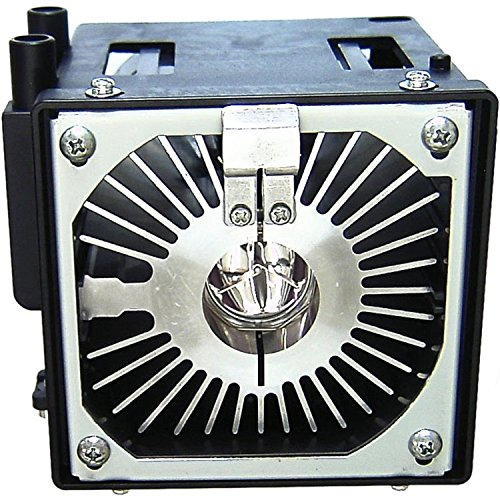 Xenon Housing - JVC Original Xenon Lamp & Housing for the DLA-G11U Projector - 30 Day Warranty