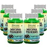 Morpheme Kapikachhu (Mucuna Pruriens) - 500mg Extract - 60 Veg Capsules - 6 Combo Pack